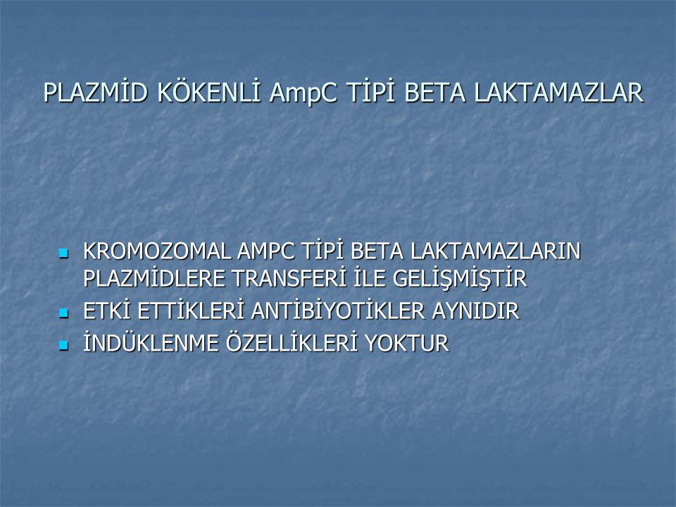 PLAZMİD KÖKENLİ AmpC TİPİ BETA LAKTAMAZLAR