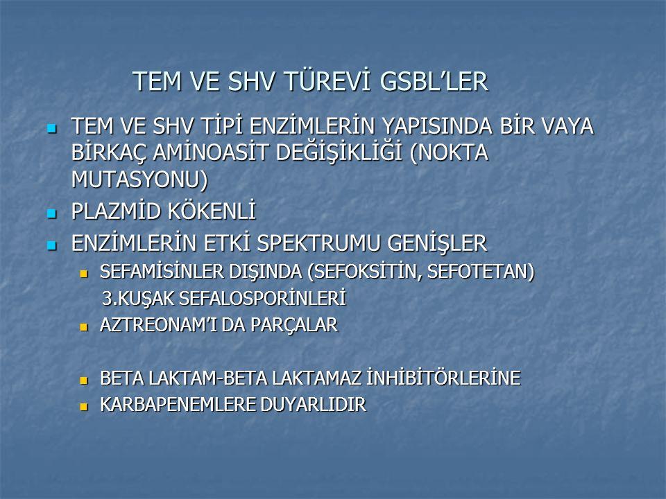 TEM VE SHV TÜREVİ GSBL'LER