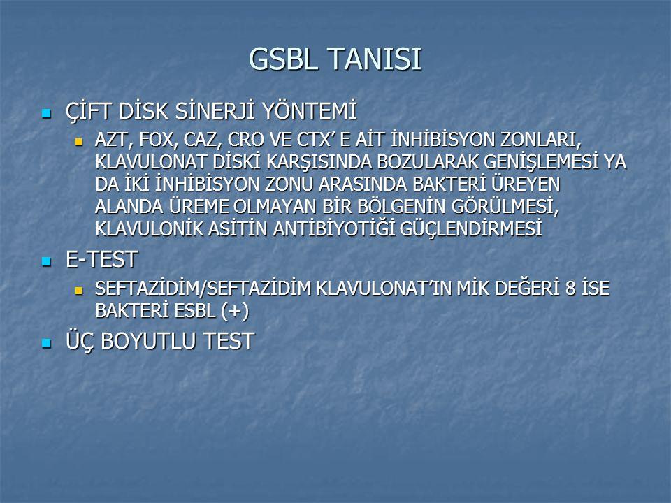 GSBL TANISI ÇİFT DİSK SİNERJİ YÖNTEMİ E-TEST ÜÇ BOYUTLU TEST