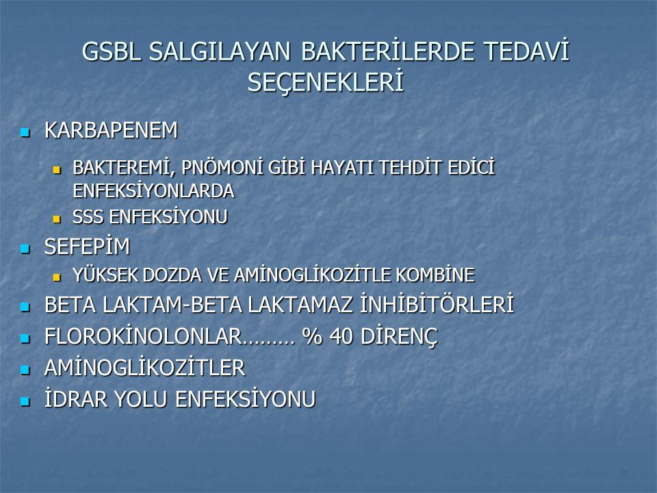 GSBL SALGILAYAN BAKTERİLERDE TEDAVİ SEÇENEKLERİ