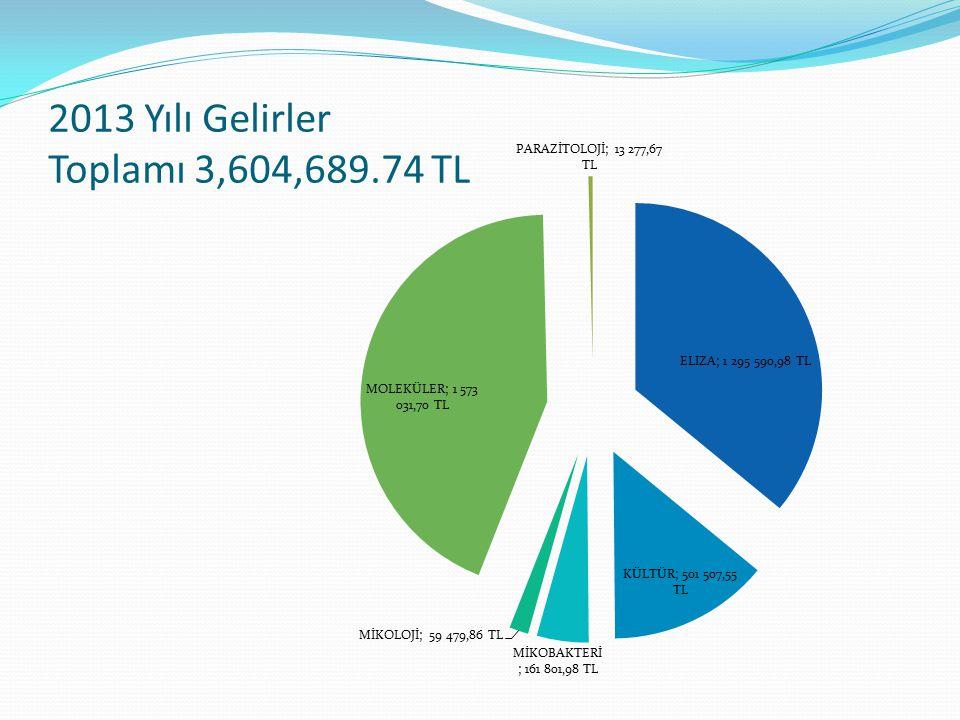 2013 Yılı Gelirler Toplamı 3,604,689.74 TL