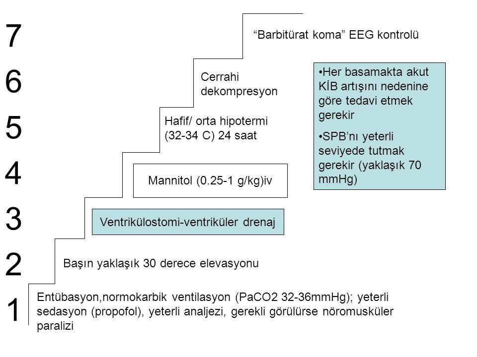 Ventrikülostomi-ventriküler drenaj