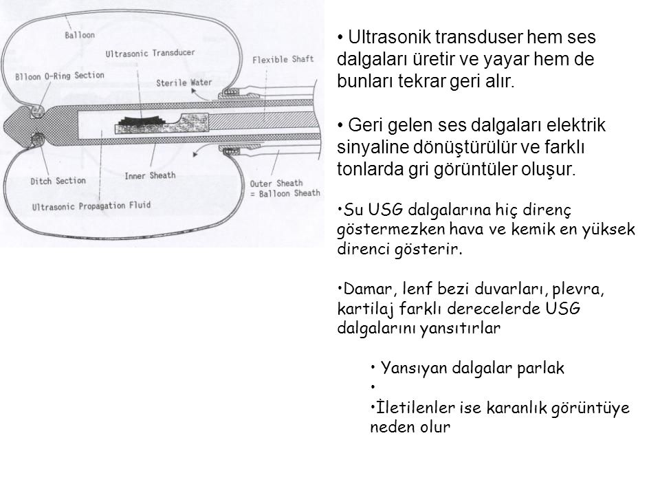 Ultrasonik transduser hem ses dalgaları üretir ve yayar hem de bunları tekrar geri alır.