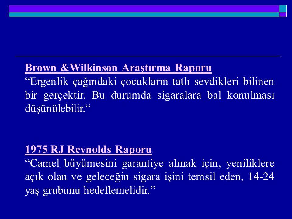 Brown &Wilkinson Araştırma Raporu