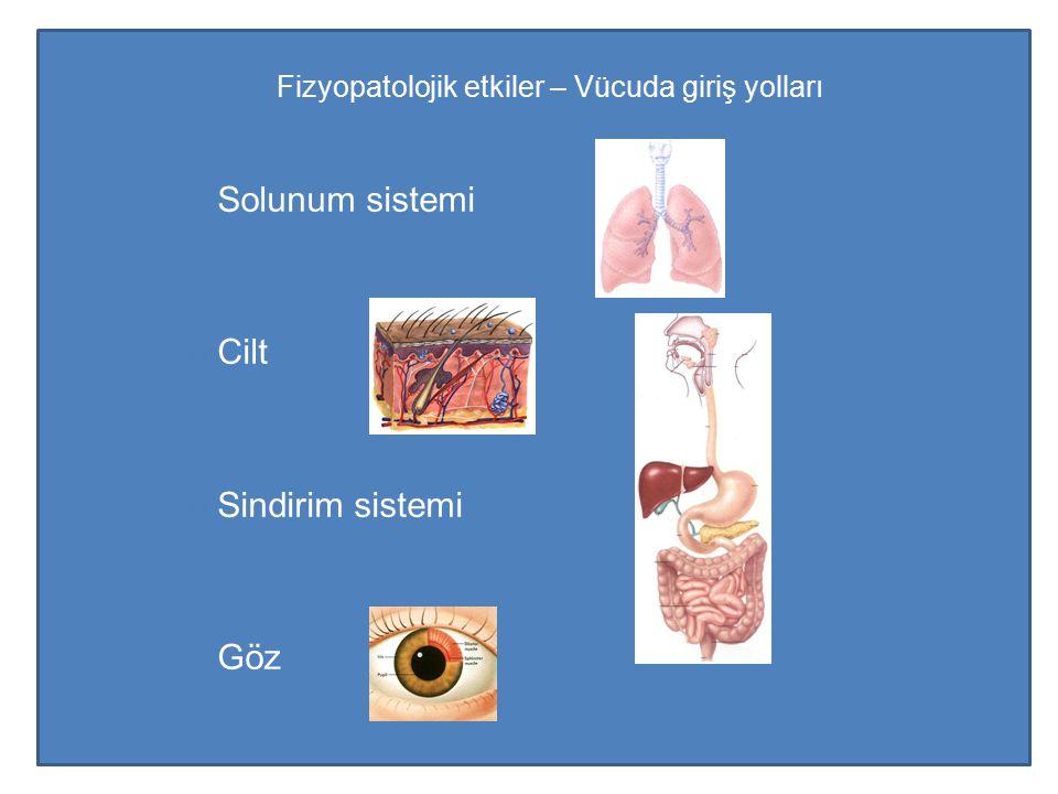 Fizyopatolojik etkiler – Vücuda giriş yolları