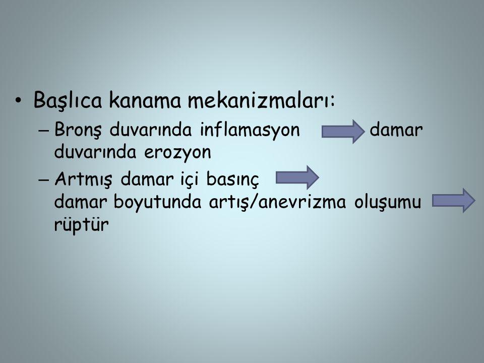 Başlıca kanama mekanizmaları: