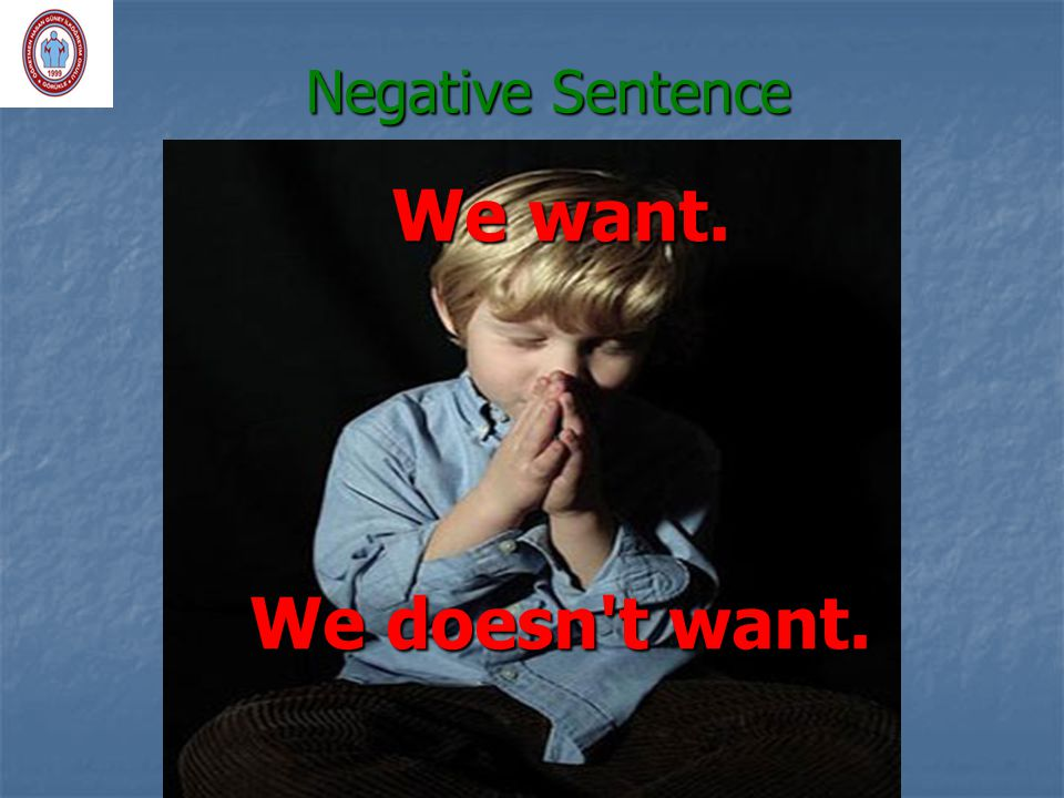 Negative Sentence We want. We doesn t want.