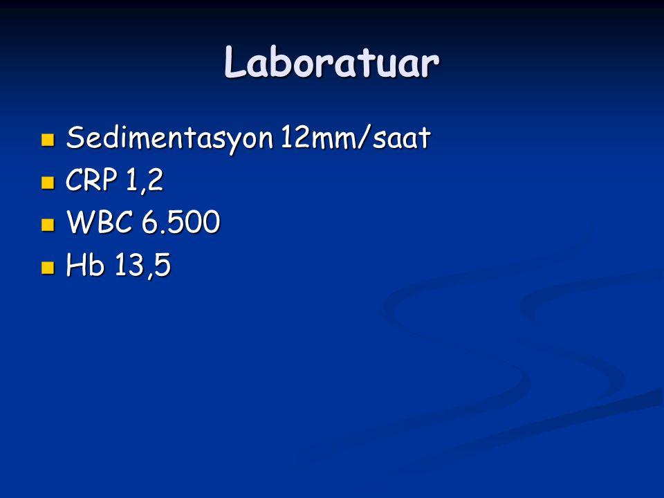 Laboratuar Sedimentasyon 12mm/saat CRP 1,2 WBC 6.500 Hb 13,5