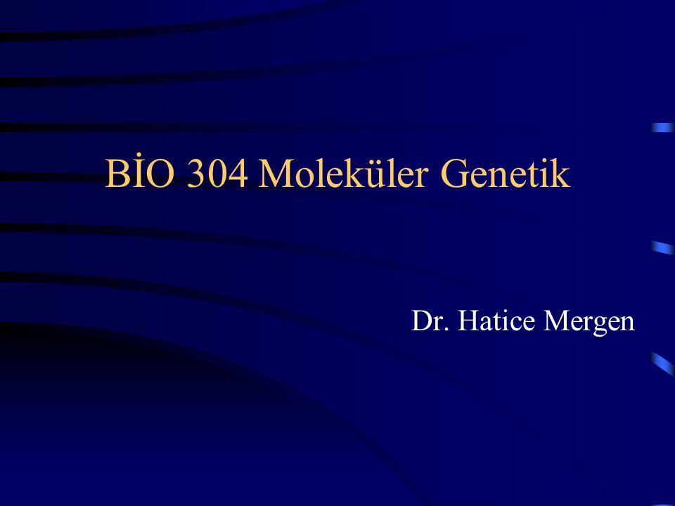 BİO 304 Moleküler Genetik Dr. Hatice Mergen