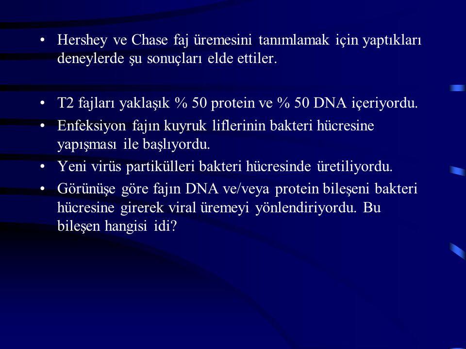 Hershey ve Chase faj üremesini tanımlamak için yaptıkları deneylerde şu sonuçları elde ettiler.