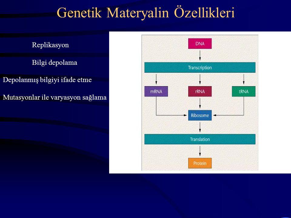 Genetik Materyalin Özellikleri