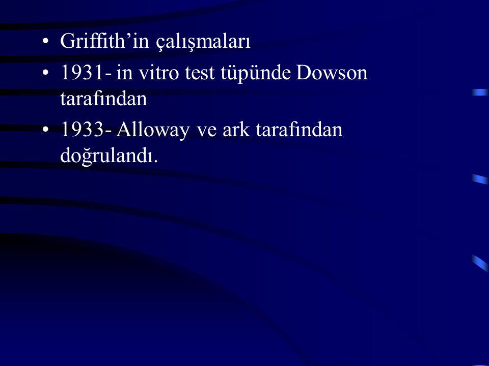 Griffith'in çalışmaları