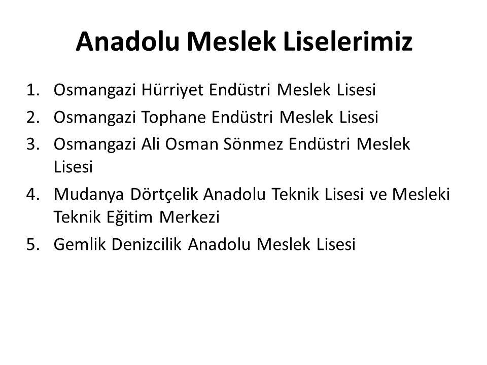 Anadolu Meslek Liselerimiz