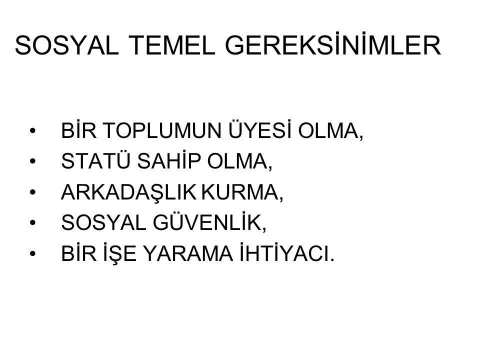 SOSYAL TEMEL GEREKSİNİMLER