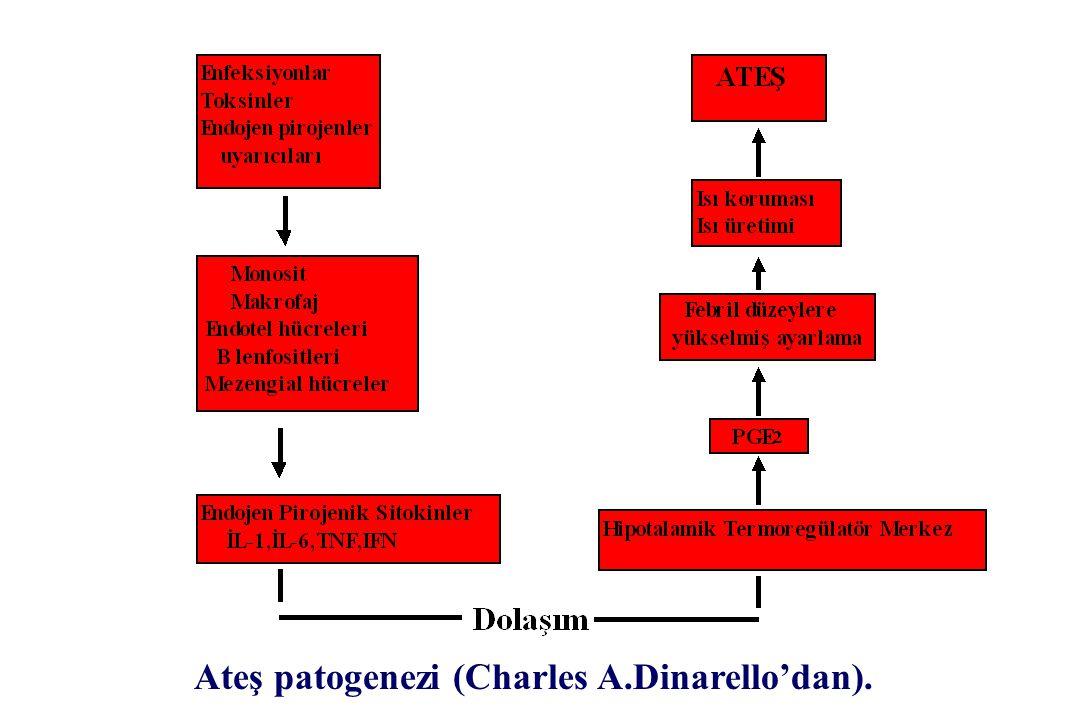 Ateş patogenezi (Charles A.Dinarello'dan).