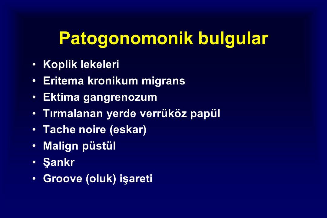 Patogonomonik bulgular