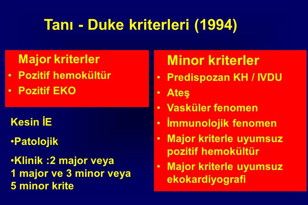 Tanı - Duke kriterleri (1994)