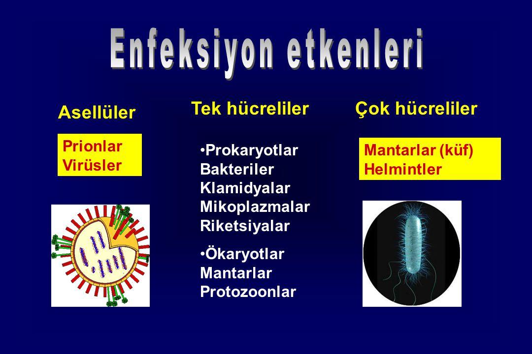 Enfeksiyon etkenleri Tek hücreliler Çok hücreliler Asellüler