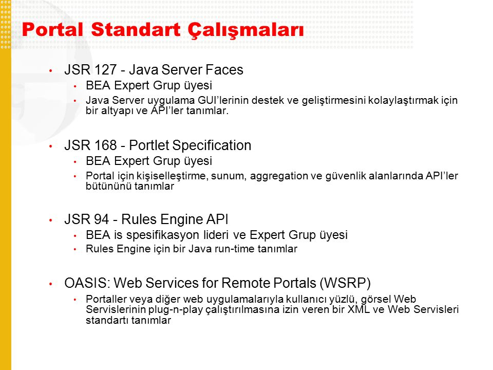 Portal Standart Çalışmaları