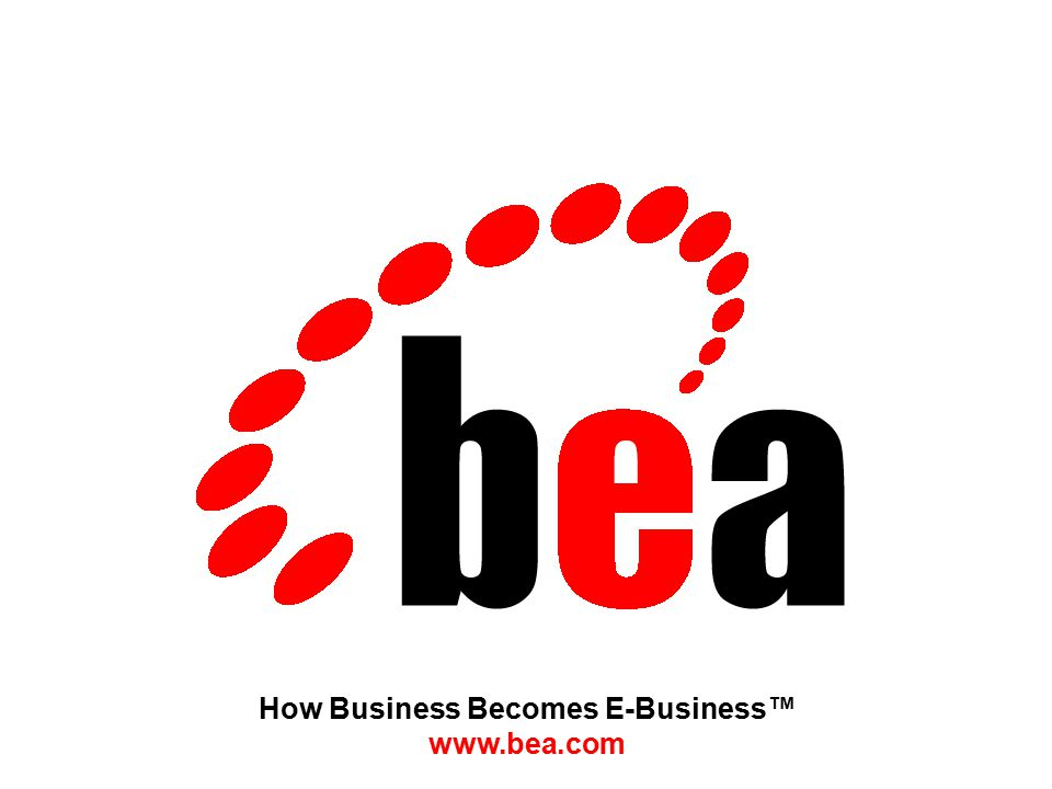 How Business Becomes E-Business™