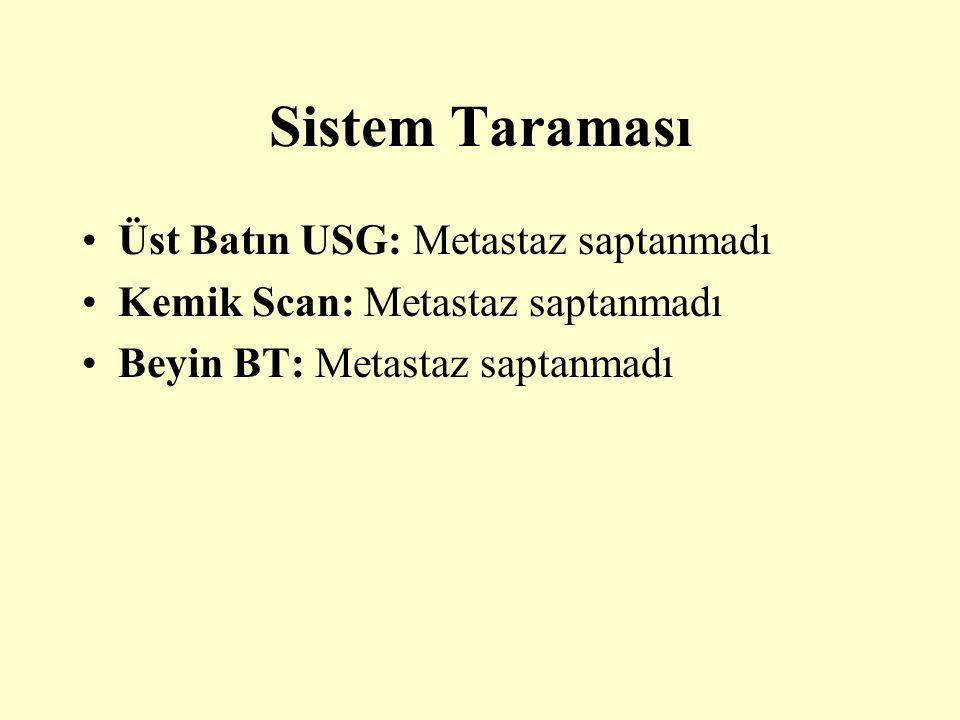 Sistem Taraması Üst Batın USG: Metastaz saptanmadı