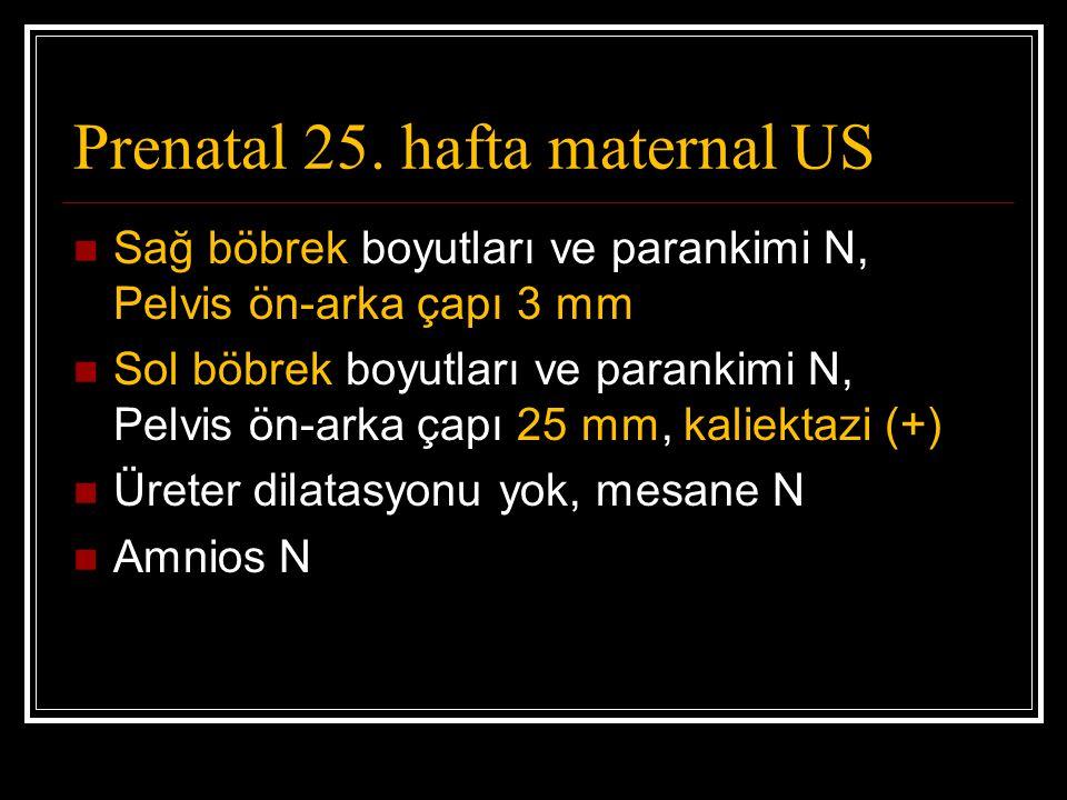 Prenatal 25. hafta maternal US