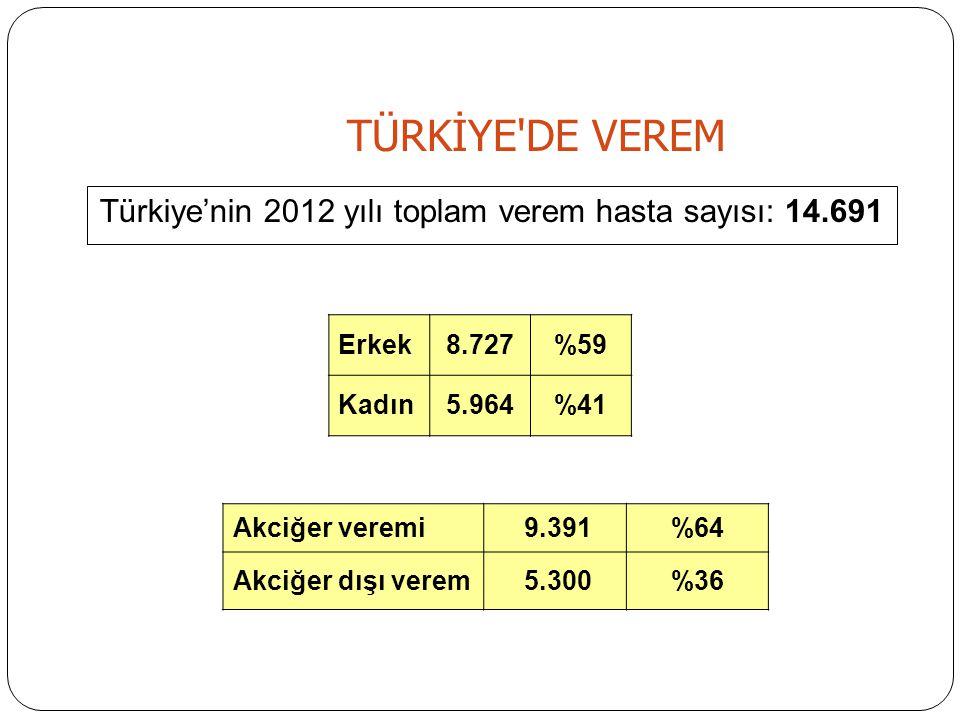 Türkiye'nin 2012 yılı toplam verem hasta sayısı: 14.691