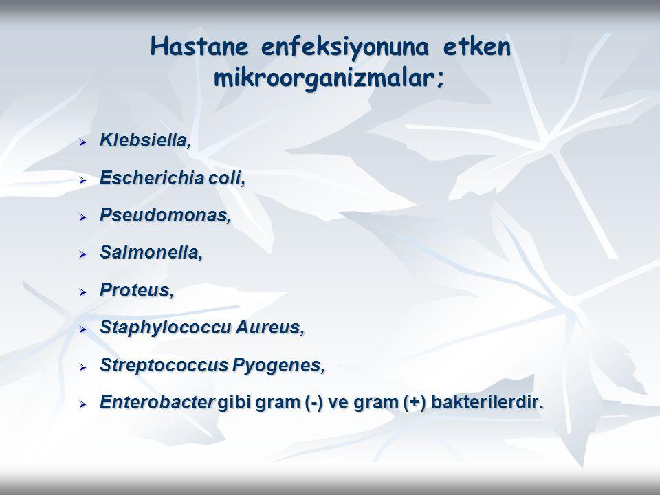 Hastane enfeksiyonuna etken mikroorganizmalar;