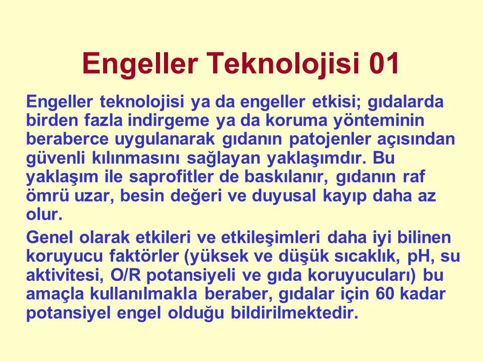 Engeller Teknolojisi 01
