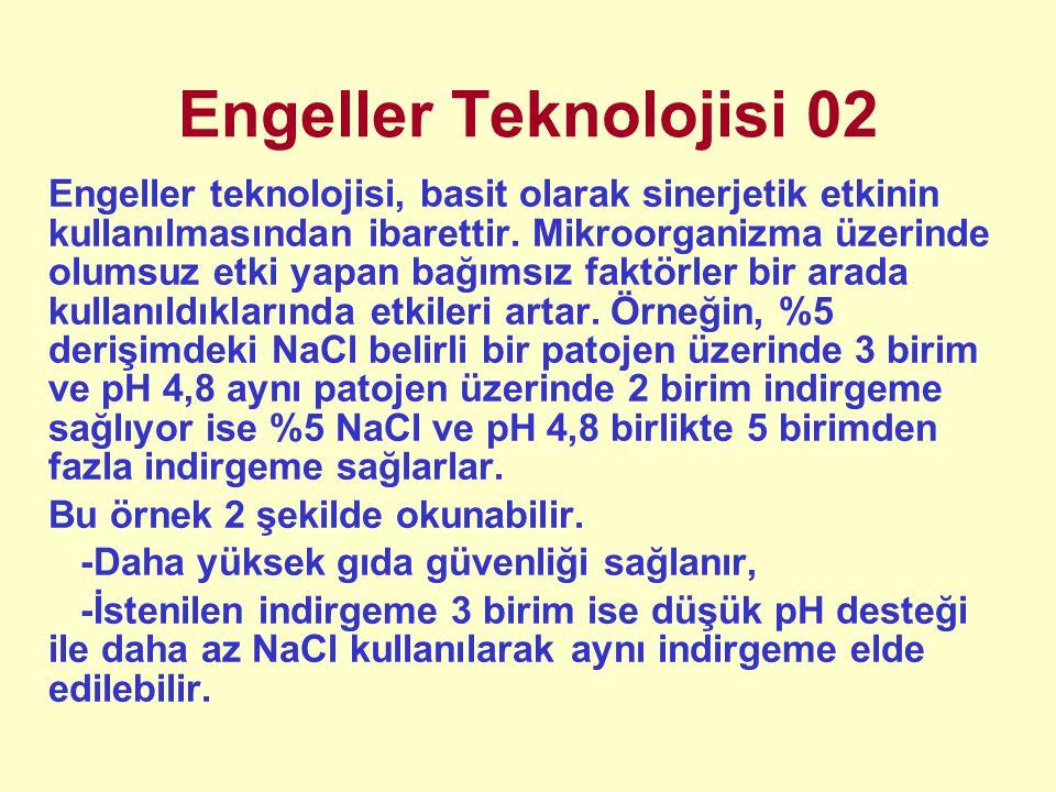 Engeller Teknolojisi 02