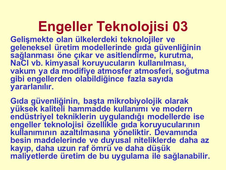 Engeller Teknolojisi 03