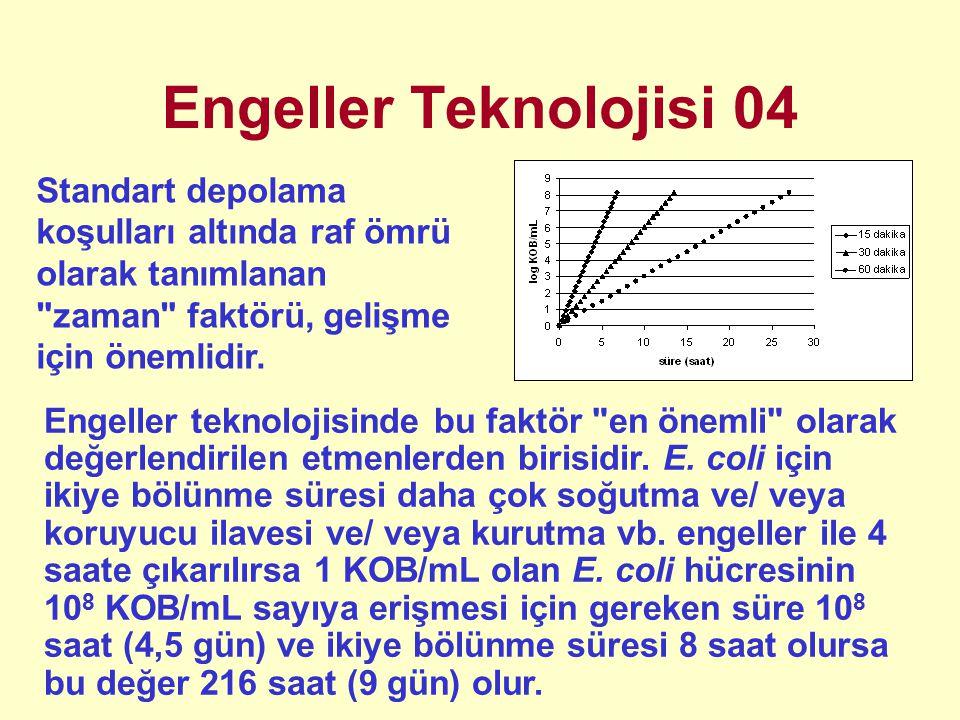 Engeller Teknolojisi 04 Standart depolama koşulları altında raf ömrü olarak tanımlanan zaman faktörü, gelişme için önemlidir.