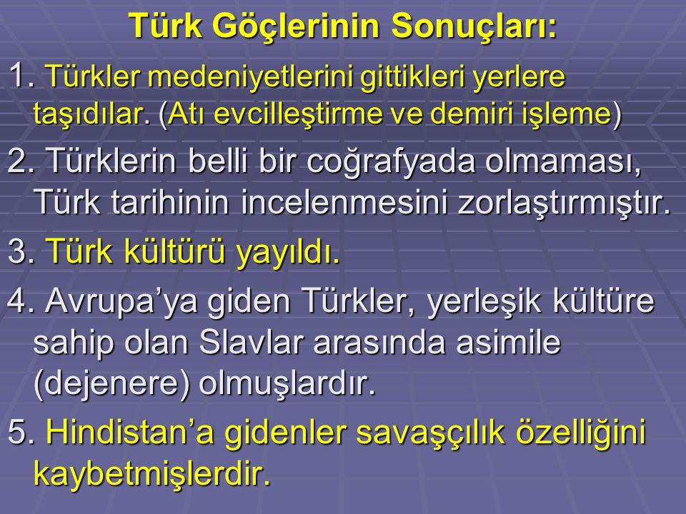 Türk Göçlerinin Sonuçları: