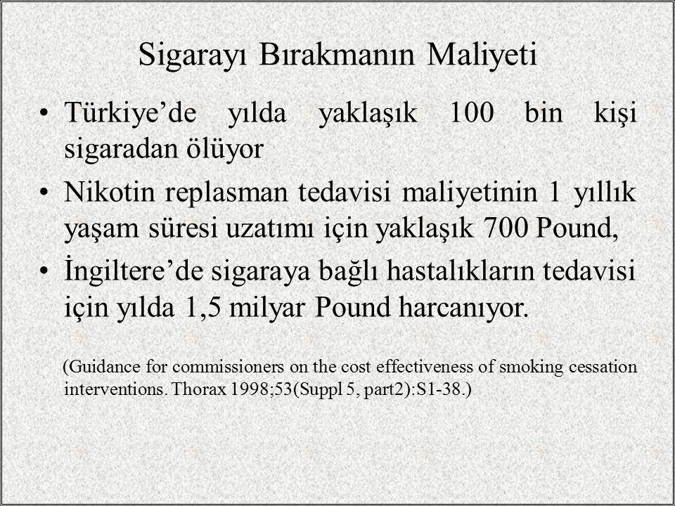 Sigarayı Bırakmanın Maliyeti