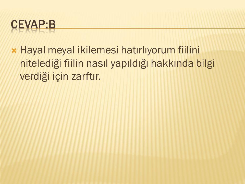 CEVAP:B Hayal meyal ikilemesi hatırlıyorum fiilini nitelediği fiilin nasıl yapıldığı hakkında bilgi verdiği için zarftır.