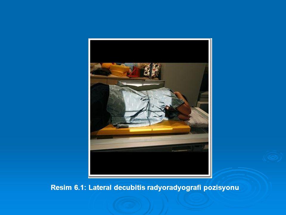 Resim 6.1: Lateral decubitis radyoradyografi pozisyonu