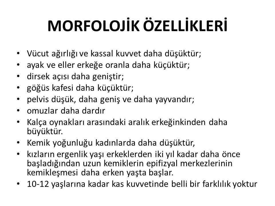 MORFOLOJİK ÖZELLİKLERİ