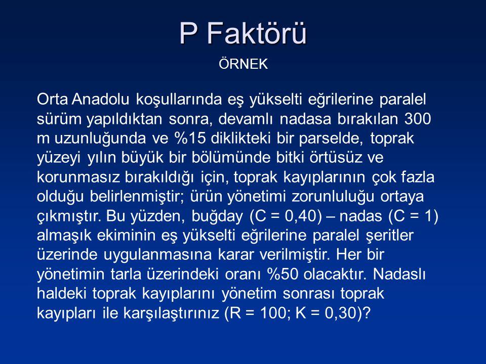 P Faktörü ÖRNEK.