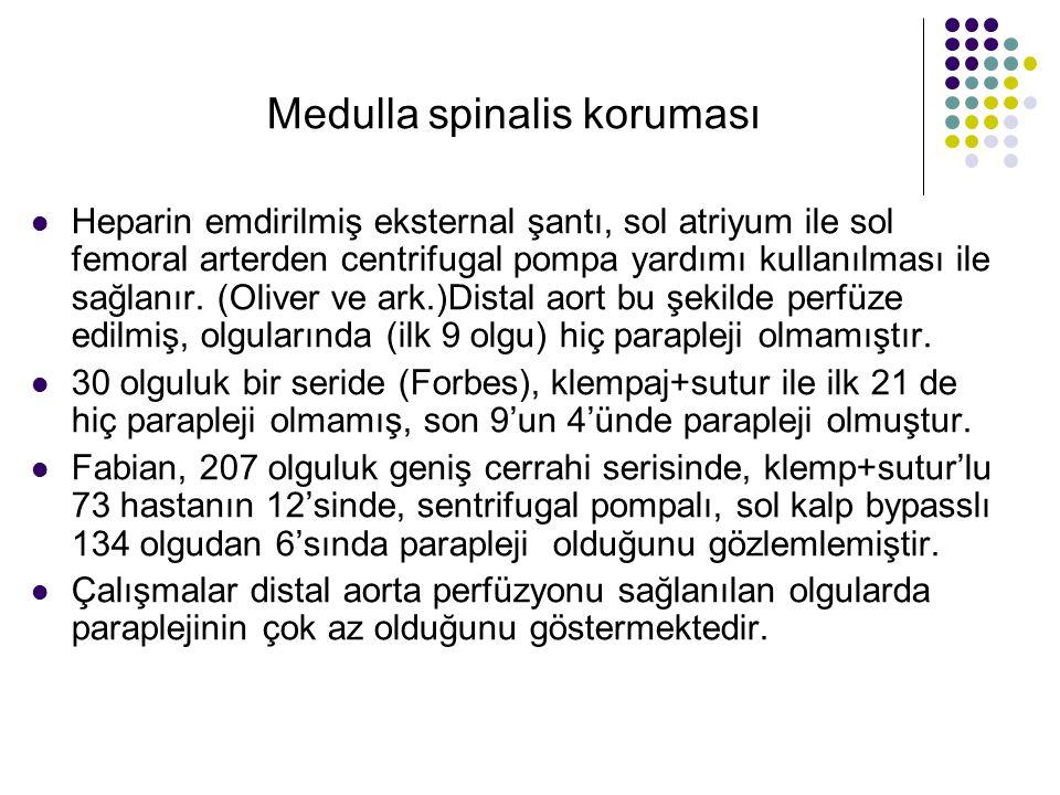 Medulla spinalis koruması