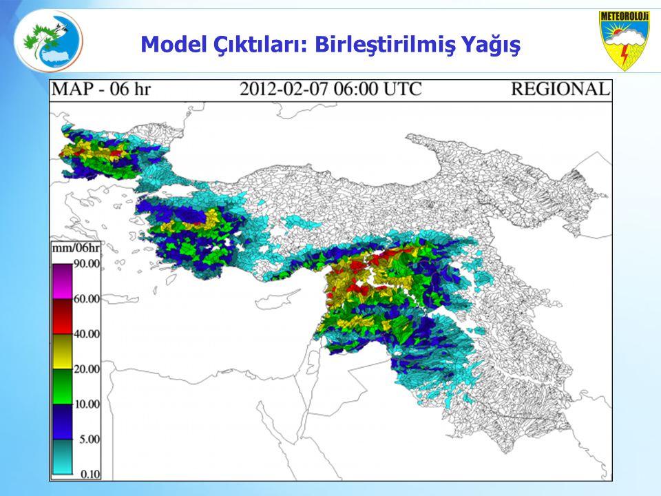 Model Çıktıları: Birleştirilmiş Yağış