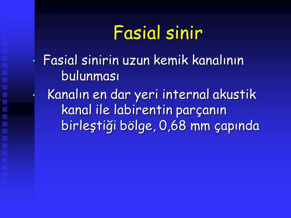 Fasial sinir Fasial sinirin uzun kemik kanalının bulunması