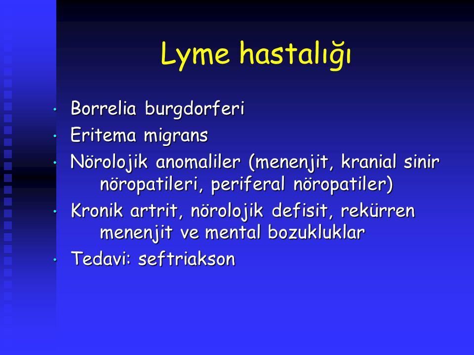 Lyme hastalığı Borrelia burgdorferi Eritema migrans