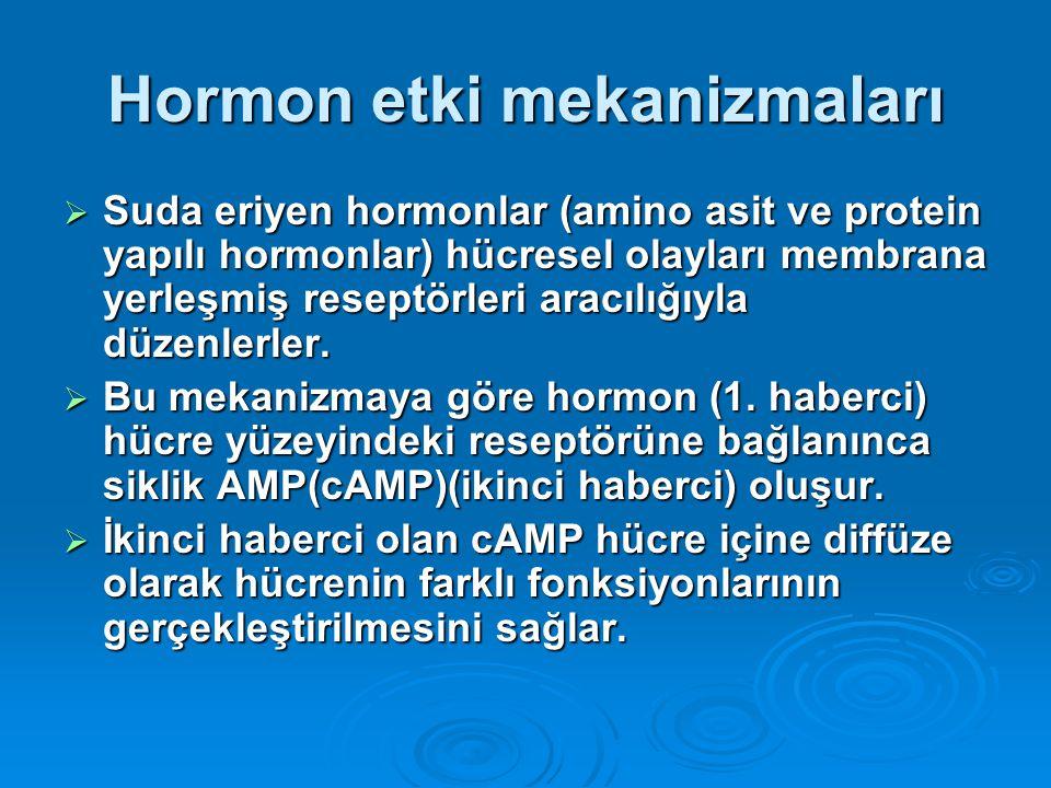 Hormon etki mekanizmaları