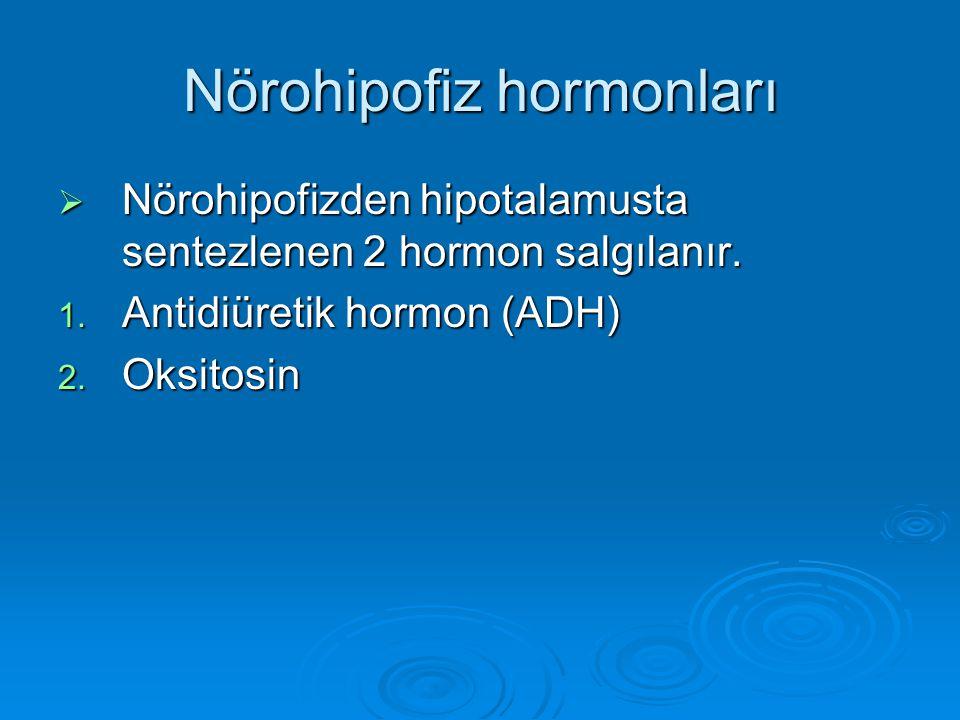 Nörohipofiz hormonları