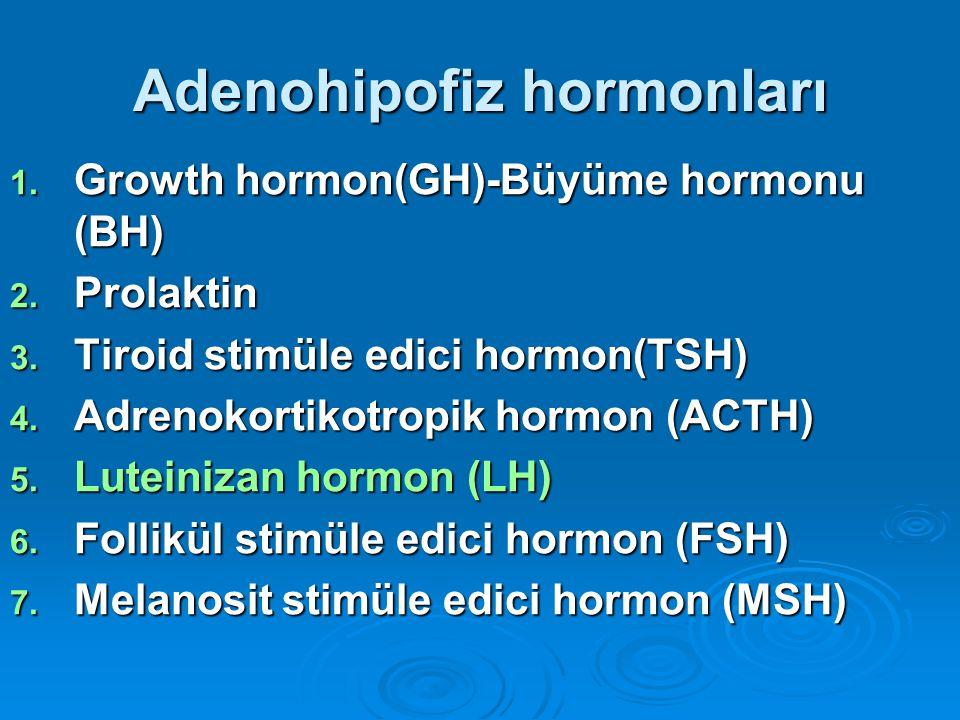 Adenohipofiz hormonları