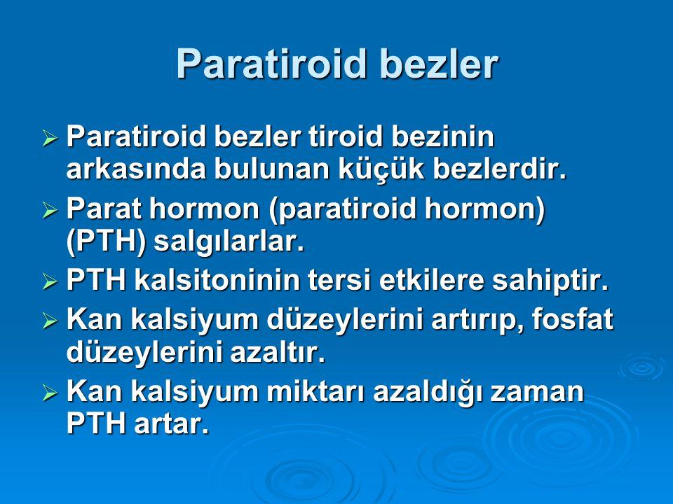 Paratiroid bezler Paratiroid bezler tiroid bezinin arkasında bulunan küçük bezlerdir. Parat hormon (paratiroid hormon) (PTH) salgılarlar.