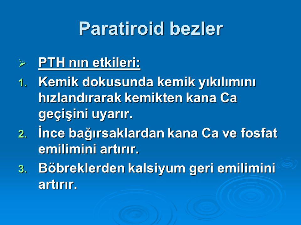 Paratiroid bezler PTH nın etkileri: