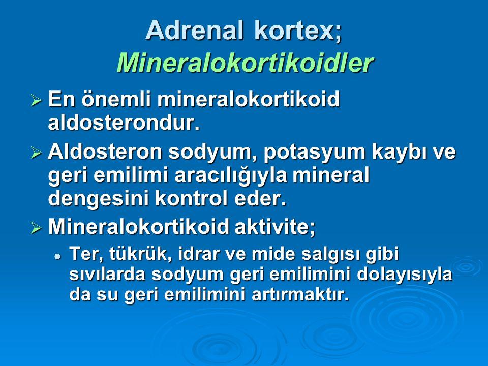 Adrenal kortex; Mineralokortikoidler