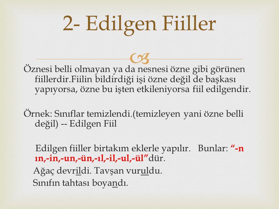2- Edilgen Fiiller