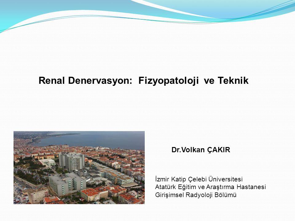 Renal Denervasyon: Fizyopatoloji ve Teknik